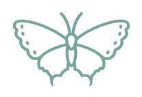 Farfalla azzurro_verde