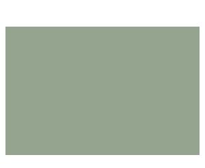 farfalla-salvia